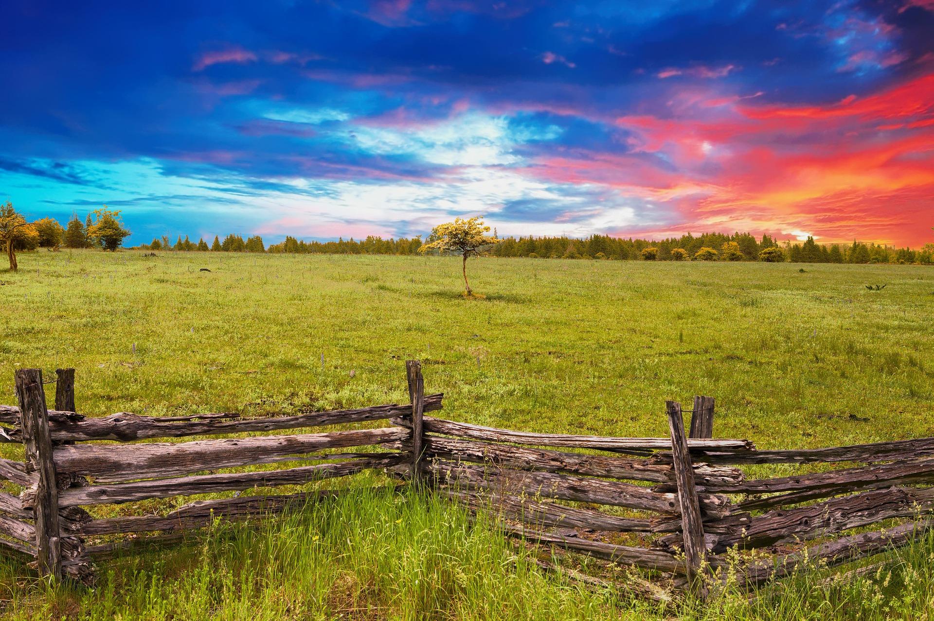 fence-3185482_1920
