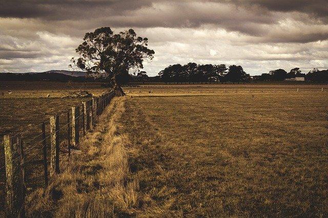 plot u pole