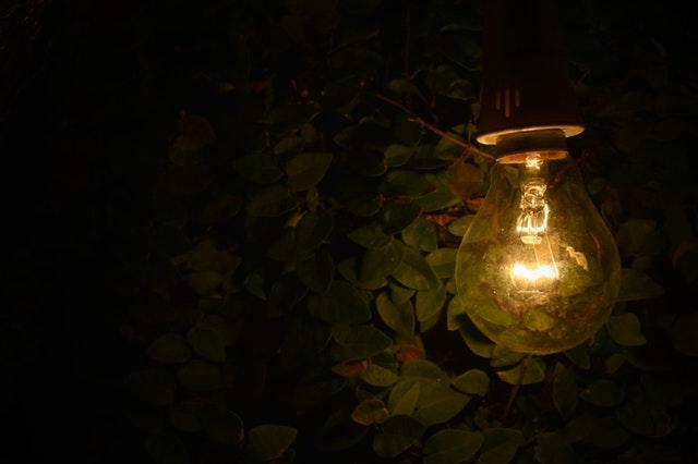žárovka v zeleni